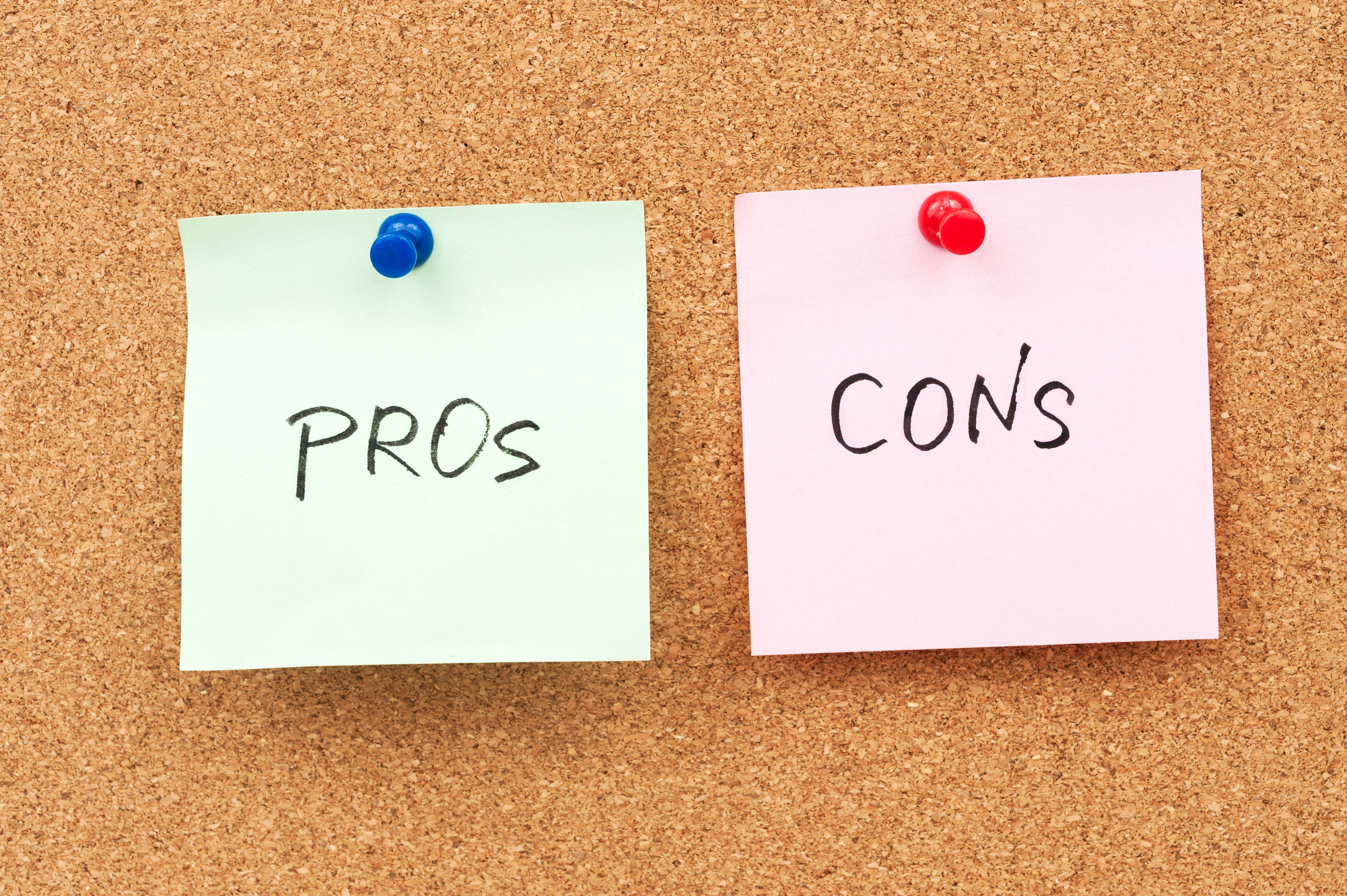 Pros and Cons of Software Consulting Firms vs Independent Contractors